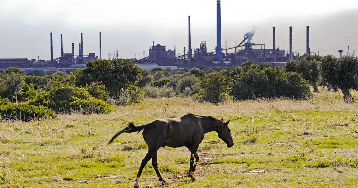 Ilva e le altre: bonifiche farsa sui terreni agricoli inquinati
