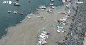 Una densa schiuma bruna invade le coste turche: è l'allarme degli ecologisti per le mucillagini. Il video è fantastico