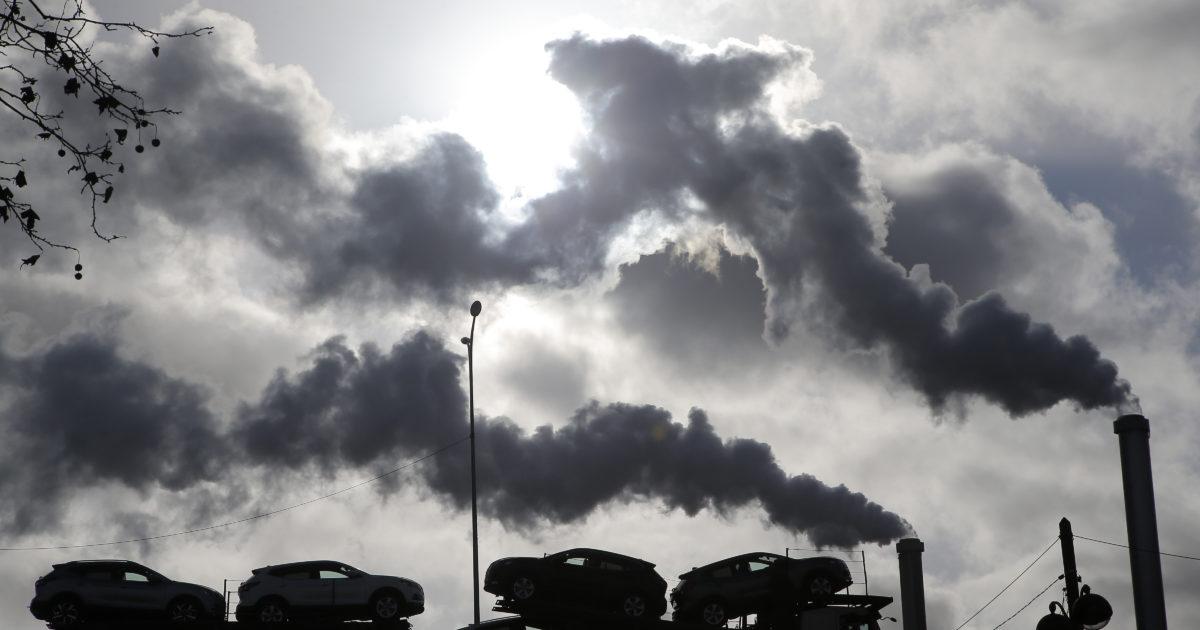 """Il giurista Carducci: """"Abbiamo fatto causa allo Stato: sull'ambiente si è agito poco e male"""""""