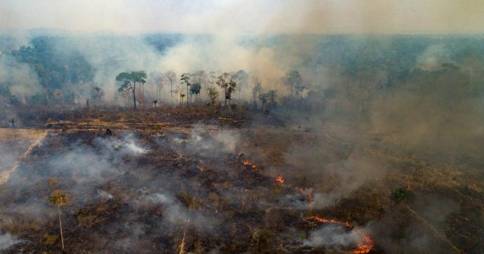 Amazzonia, attacco mortale ad ambiente e indios: l'ecocidio della foresta e il genocidio dei suoi popoli iniziato 500 anni fa