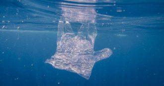 """""""Nel mar Mediterraneo oltre 1,17 milioni di tonnellate di plastica. L'Italia è il secondo Paese che inquina di più ogni anno"""": il report"""