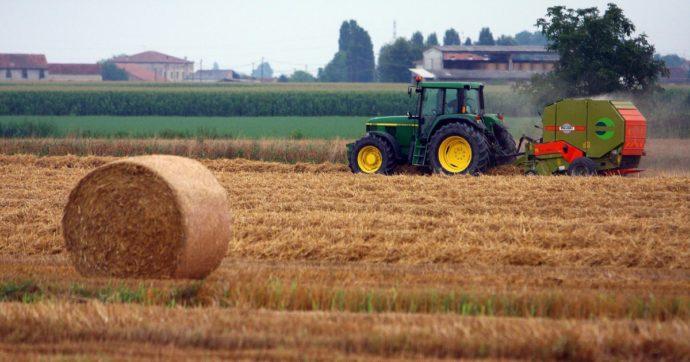 Farm to Fork, le commissioni del Parlamento Ue approvano il testo: chiesto taglio dei pesticidi e reddito equo per gli agricoltori