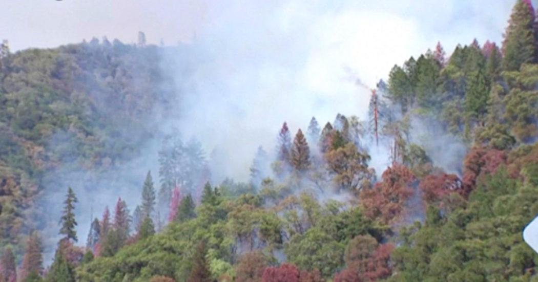 California, in fiamme 85mila acri di boschi: il Dixie Fire costringe la popolazione a evacuare – Video