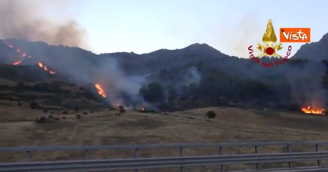 Incendi in Sicilia, decine di roghi nel Palermitano: pioggia di cenere sul capoluogo. In fiamme anche Portella della Ginestra