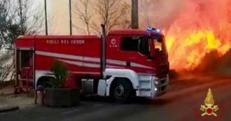 Sicilia in fiamme, incendi a Catania e Palermo. Musumeci chiede stato di mobilitazione al governo