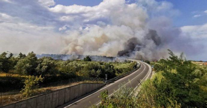 Incendi, in Sicilia oltre 250 interventi dei pompieri in 24 ore. Roghi anche in Molise e Abruzzo