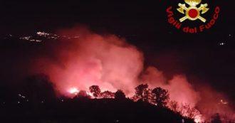 """Incendi, roghi dall'Emilia alla Sicilia. """"Catastrofe in Aspromonte"""". 800 interventi dei pompieri di 24 ore. Mobilitata la Protezione civile"""