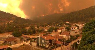 Grecia, in due settimane bruciati oltre 100mila ettari di foreste. Sull'isola di Evia la situazione peggiore. Roghi anche in Spagna