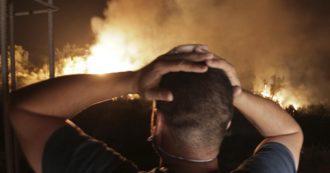 Incendi, a fuoco anche l'Algeria: almeno 65 morti e decine di roghi. Proclamati tre giorni di lutto nazionale