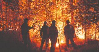 """Incendi, in Siberia il rogo che potrebbe essere """"il più grande della storia del pianeta"""". Il fumo raggiunge il Polo Nord: non era mai successo"""