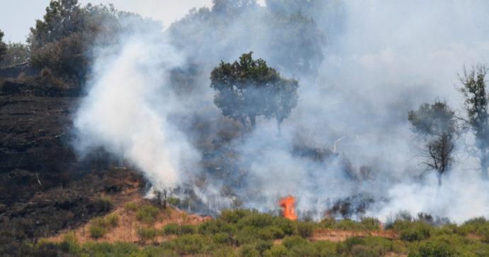 """Incendi in Sicilia, progettavano un rogo a Ferragosto: due allevatori arrestati a Siracusa. """"Vedi che esce, sarà un giorno da piangere"""""""