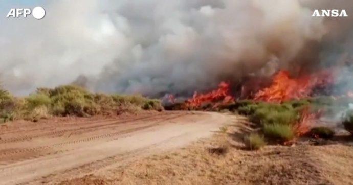 Incendi, il 2021 è l'anno peggiore dal 2008: superato il record del 2017. Andati in fiamme 140mila ettari di boschi