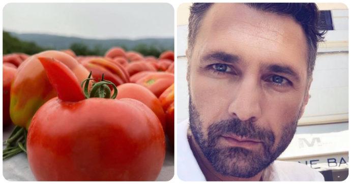 """Raoul Bova raccoglie pomodori nella sua masseria in Puglia. Scoppia il caso: """"Non puoi farlo"""""""