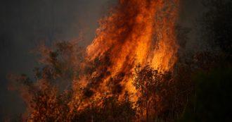 """Incendio in Costa Azzurra: evacuati migliaia di turisti. Macron: """"La battaglia continua"""""""