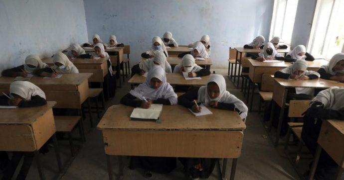 """Afghanistan, l'associazione che riapre le scuole e distribuisce libri casa per casa: """"Non fate chiudere le classi. Ne va del nostro futuro"""""""