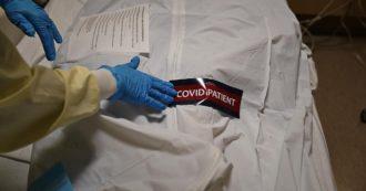 Covid, specialista in malattie infettive scrive al Los Angeles Times: