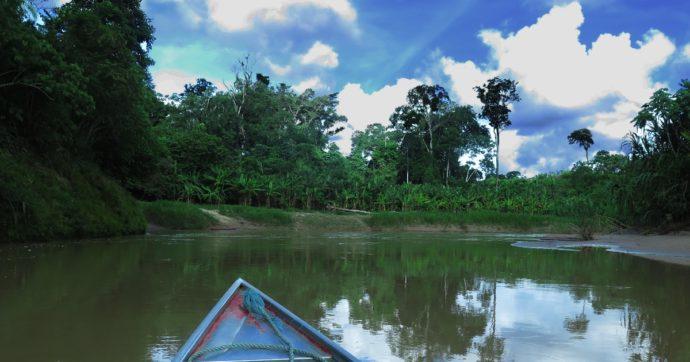 Amazzonia, che sia una questione cruciale per tutta l'umanità lo sappiamo da decenni