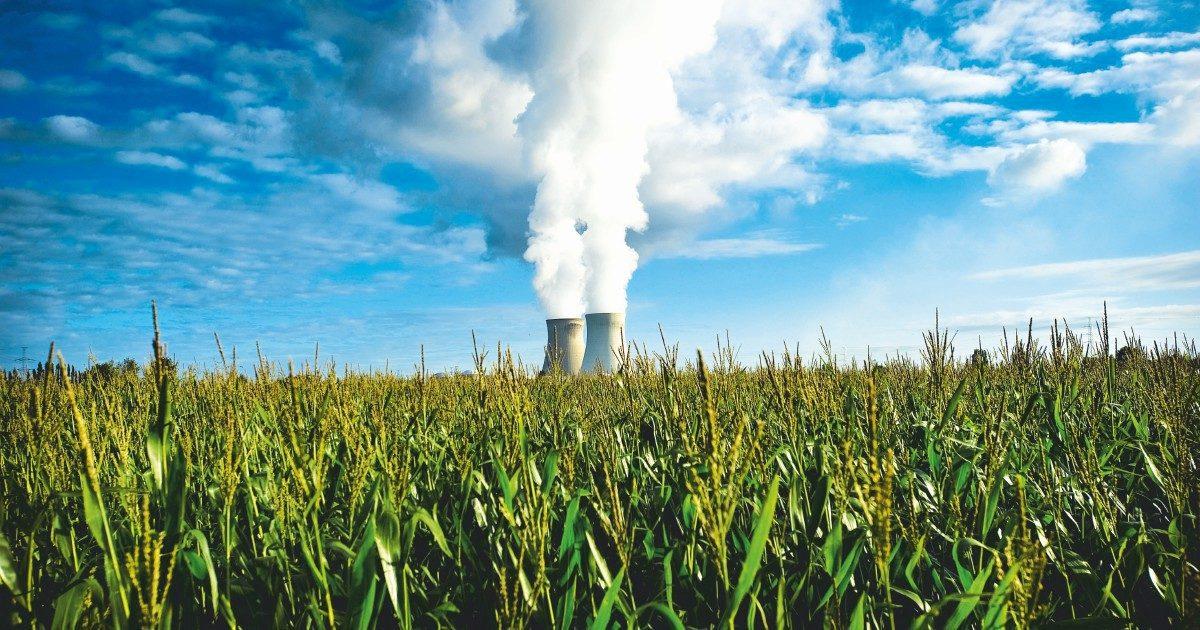 """Conte a Cingolani: """"Niente nucleare, coordinati con noi"""""""