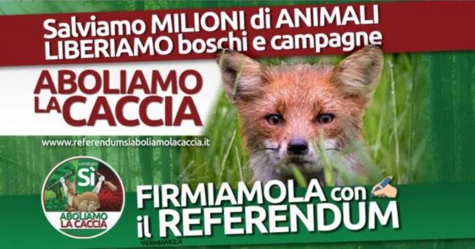 Referendum per l'abolizione della caccia, perché se ne parla così poco? Troppi interessi?