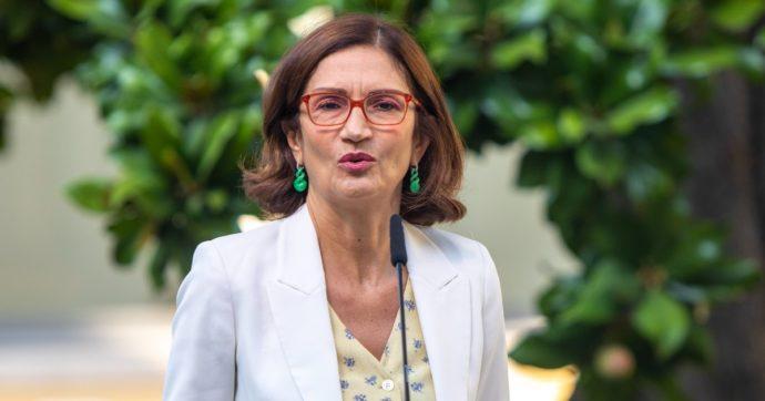 """Brescia, la battaglia contro i nuovi depuratori del lago di Garda che piacciono alla ministra Gelmini: """"Uno spreco, creano nuovi problemi"""""""