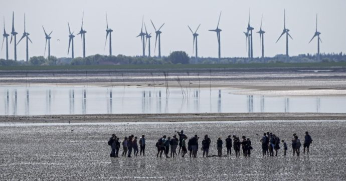 Il cambiamento climatico inizia a infastidirci, ma l'umanità si comporta come la rana che bolle