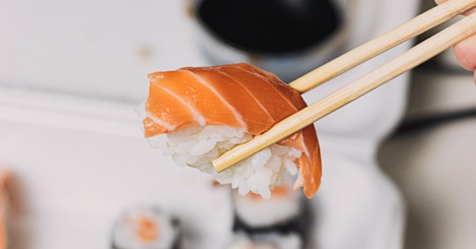 Il lato oscuro del salmone: gli allevamenti intensivi mettono a rischio la salute umana e dell'ambiente Ecco tutte le criticità di questo pesce