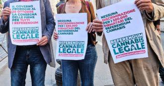 Cannabis, governo verso la proroga dei termini per salvare il referendum dopo i ritardi dei Comuni: ovazione al presidio a Montecitorio