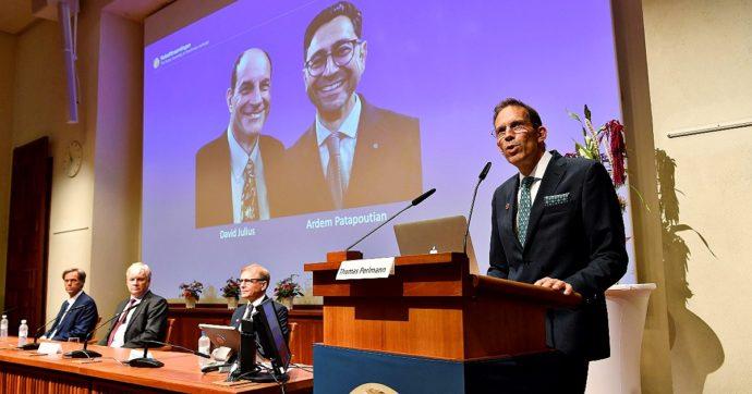 """Premio Nobel per la Medicina, premiati David Julius e Ardem Patapoutian """"per le loro scoperte di recettori per temperatura e tatto"""""""